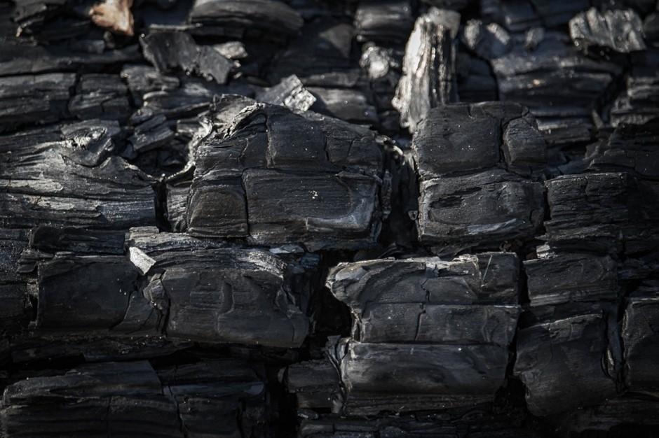 炭に興味を持ってみよう